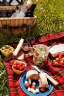 Kanotocht met Picknick in Utrecht